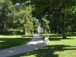 Vihula mõisa park :15953  Autor ANNE KALDAM  Kuupäev  06.07.2007
