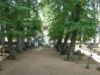 Ilumäe kabeliaia piirdemüür :15889 vaade KABELIS läände.-näha peavärav seest  Autor ANNE KALDAM  Kuupäev  19.07.2007
