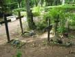 Tudu kalmistu, reg. nr 5802. Vaade puuristidele kalmistul. Foto: I. Raudvassar, kuupäev 25.07.2007