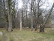 Vatla pargi idaosa  Kalli Pets 12.04.2012
