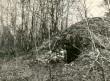Maa-alune kalmistu - keldriase edelast. Foto: M. Mandel.