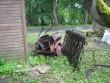 Kirbla leitud aia detailid 11.06.2012, K. Pets