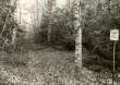 Kivikalme - läänest. Foto: E. Väljal, 24.10.1985.