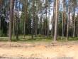 Vaade kääpale rekonstrueeritava teetrassi pealt. Foto: Viktor Lõhmus, 08.06.2012.