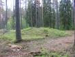 Vaade jõekaldal asuvale kääpale. Lähedal metsavenna kivi. Foto: Viktor Lõhmus, 08.06.2012.