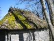 Jaagu viljaaida katus, Kalli Pets, 30.03.2012 007