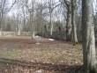 Piirdemüür Kalli Pets 30.03.2012