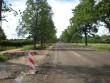 Roosna-Alliku mõisa alleed Tiit Schvede 26.06.2012