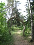 Kalmistu värav. Foto Silja Konsa 06.07.2006