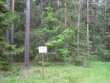 Tähise taga oleva kääpa varjavad puud. Foto: Viktor Lõhmus, 04.07.2012.