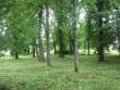 Vaade pargi lõunaosale. Foto Silja Konsa 08.07.2012