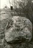 Kultusekivi - läänest, E. Väljal, 5.mai 1987