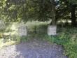Harju-Madise vana kalmistu. Foto: Kadri Tael 14.07.2012