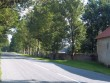 Lohu mõisa piirdemüür pargi lääneküljel. K. Klandorf 27.07.2012