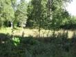 Aavere mõisa park :16074näha pargi  Autor Anne Kaldam  Kuupäev  31.08.2007