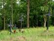 Kuri kalmistu Autor Maarika Leis-Aste Kuupäev 16.07.2012