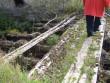 Pada mõisa vesiveski : ...VESKIPOOLNE TAMM-avariilises olukorras.  Autor Anne Kaldam  Kuupäev  11.09.2007