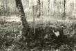 Ohvrikivi - edelast. Foto: E. Väljal, 05.10.1984.
