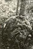 Ohvrikivi - läänest. Foto: E. Väljal, 05.10.1984.