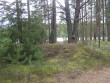 Kääbas metsatee vasakul järvepoolsel küljel. Foto: Viktor Lõhmus, 29.08.2012.