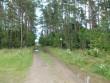Vaade kalmistule idast. Foto: Ulla Kadakas, 07.08.2012.