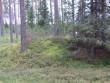 Kääbas eraldub maastikus väga selgelt. Foto: Viktor Lõhmus, 29.08.2012.