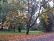 Kasti mõisa park, mõisa peahoone esine väljak. K. Klandorf 27.09.2012