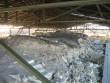 Vaade kaetud müüridele. Maasi ordulinnus. Foto: Rita Peirumaa, 31.10.2012