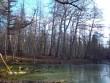 Vana-Vigala mõisa park. Hirvepark, vaade Lisette saarelt Jakobi saare suunas. K. Klandorf 13.11.2012