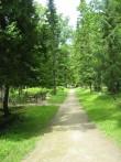 Vaade kalmistu kesksele jalgteele Foto 29.05.2012 Anne Kivi