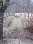 15040 Jäneda mõisa park, vaade peahoone läänepoolselt trepilt.  27.11.2012 Anne Kaldam