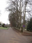 Jäneda mõisa park (15040), vaade peahhone eest pargi alleepuudele. Foto: M.Abel, kuupäev 27.11.12