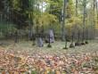 Rõuge vana kalmistu. Foto Tõnis Taavet, 10.10.2012.