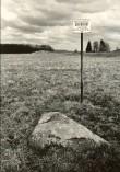 Kultusekivi - lõunast  Autor E. Väljal  Kuupäev  26.04.1984