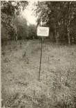 Pelgupaik. Foto: O. Kõll, 06.09.1973.
