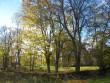 Kiriku piirdeaed - kuivlaos kiviaed. Valjala. Foto: Rita Peirumaa, 2011