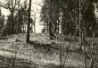 Linnamägi - vall lõunast. Foto: E. Väljal.