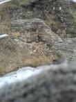 Lihula linnuse varisenud müürilõik. Kalli Pets 12.04.2013