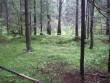 Muistse põllu äärde kuhjatud kivivall. Foto: R. Peirumaa, 21.09.2007.