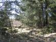 Vaade teisele, väiksemale kivikalmele põlluäärses metsas. Pildistamise suund idast läände.Foto: Viktor Lõhmus, 02.05.2013.