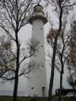 Vaade tornile  Autor Kalli Pets  Kuupäev  25.10.2007