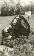 Kultusekivi - loodest. Foto: E. Väljal, 27.05.1991.