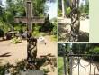 Tõrma kalmistu, reg. nr. 5781. Vaateid Tõrma kalmistult. Foto: M.Abel, kp. 18.06.13
