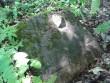Karuse leitud hauplaadi kate.  Kalli Pets, 31.05.2013