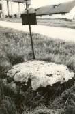 Kultusekivi - kagust. Foto: E. Väljal, 03.06.1991.
