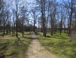 15763 Lasila mõisa park, foto. 08.05.2013 Anne Kaldam