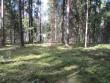 Kivikalme reg nr 13098. Foto: Ingmar Noorlaid, 27.08.2013.