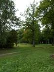 Karksi mõisa pargile vaade metsikumaja juurde viivalt teelt Foto Anne Kivi, 10.09.2013