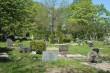 Käina kalmistu  Autor M.Mõniste  Kuupäev  23.05.2007