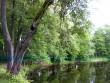 Puurmani mõisa park, vaade tiigile.  Foto: Sille Raidvere  Kuupäev: 06.08.2008